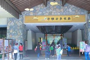 广州月子中心
