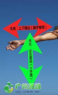 铅笔测生男女 - 怀孕妈妈 - 广州妈妈论坛